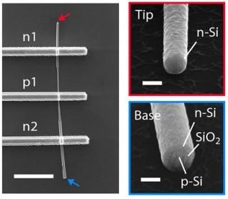 전극이 붙어있는 1차원 반도체 전자현미경 사진(왼쪽)과 끝부분을 확대한 사진 - 고려대학교 제공